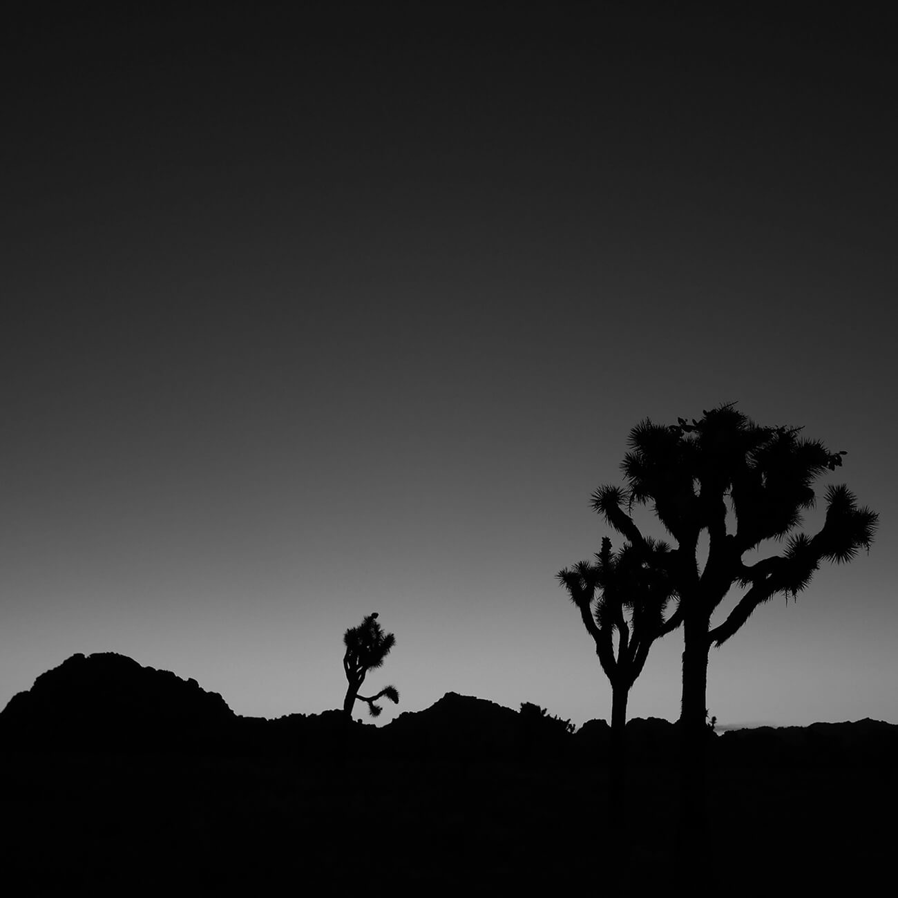 picture of Mojave Desert